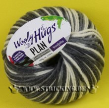 100g Woolly Hugs Plan #85