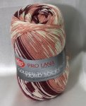 100g Golden Socks Fjord Pro Lana rose beere #189