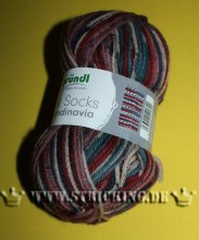 100g Hot Socks Skandinavia modern jeans multicolor #06