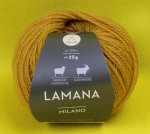 25g Lamana Milano Curry #08